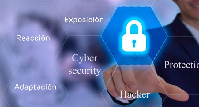 ciberseguridad en las organizaciones